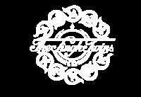 Singh Twins Logo